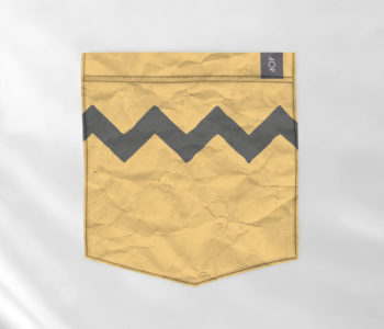bolso - charlie brown