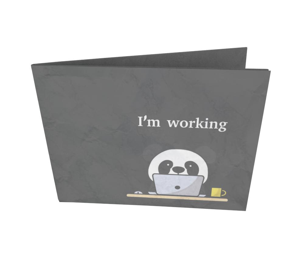 dobra - Nova Carteira Clássica - Panda Working