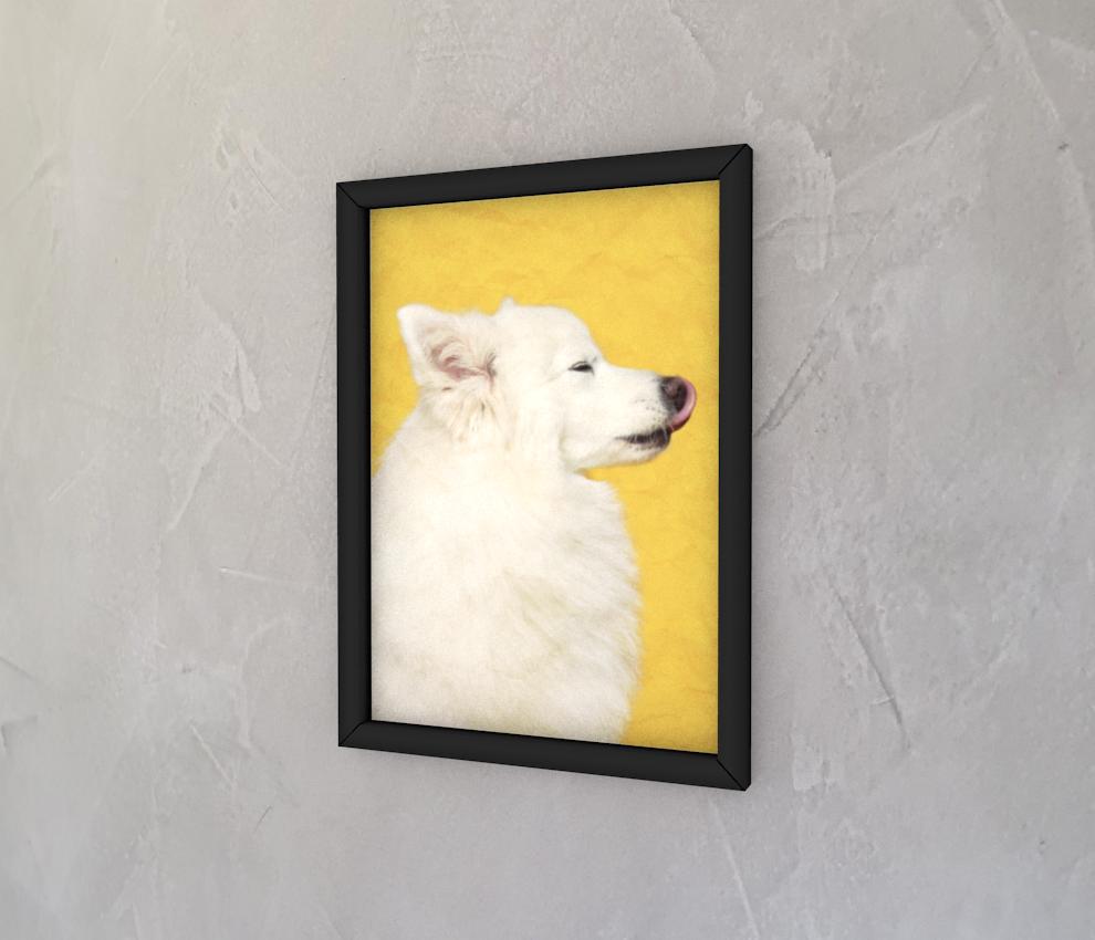 dobra - Quadro - Cachorrinho de perfil
